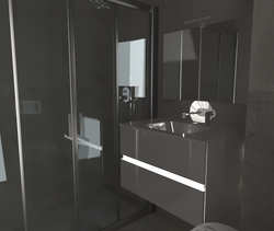 metalline Classic Bathroom Paul Dudnicenco